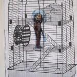 Cage Man